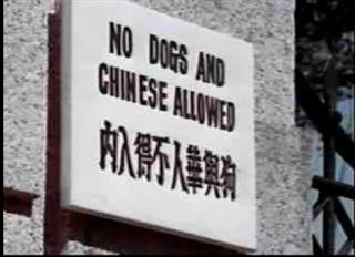dogsandchinese